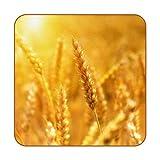 6 posavasos antideslizantes resistentes al calor decorativos para el hogar, posavasos cuadrados para tazas, tazas, vasos, cereales de maíz de grano de trigo, sol