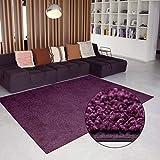 Carpet Studio Alfombra Suave al Tacto 115x170cm