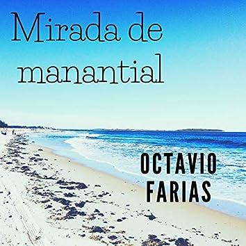 Mirada De Manantial