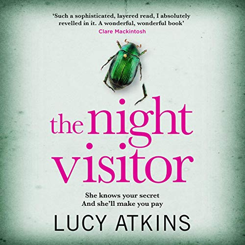 Couverture de The Night Visitor