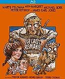 The Last Remake of Beau Geste [Blu-ray]