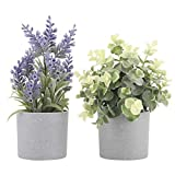 HOMEFUN Set of 2 Artificial Potted Plants Potted Eucalyptus Plant Small Artificial Lavender Flowers in Grey Plastic Pots Fake Faux Plants for Home Office Desk Table Decor Indoor 9.5' Tall