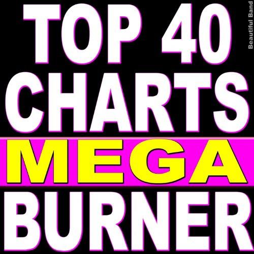 Top 40 Charts Mega Burner
