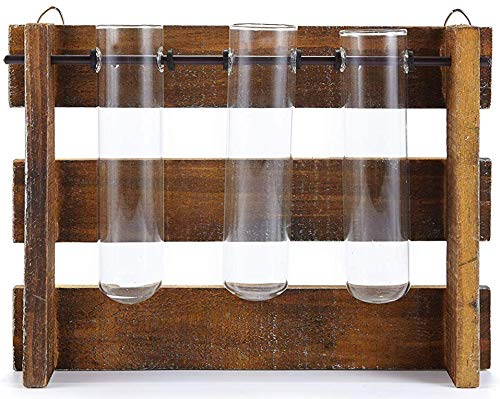 HEITMANN DECO Vase mit Reagenzglas - Reagenzglashalter aus Holz und 3 Reagenzgläser - Reagenzglasständer, Dekoration, Blumenvase