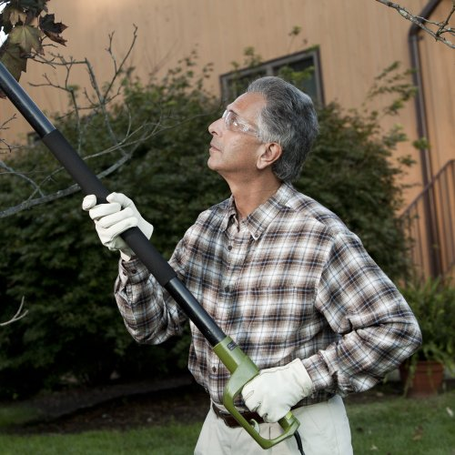 best electric pole chainsaw