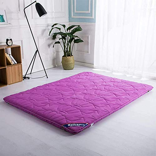 NBVCX Home Services Plenty Thick Floor Mat Nursing Spine Traditional futon Bed Easy to carry33 dormQueen Size Single Size For Guests-C 150x200cm(59x79inch)