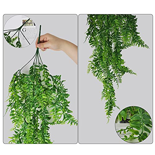 YMIFEEY Plantas