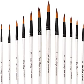 Goolsky Professional Paintbrushes Set Nylon Hair Paint Brush Fine Detail Watercolor Oil Acrylic Paint Pack of 12pcs Art Pa...