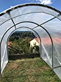 Zoom IMG-1 culture serres tunnel per pomodori