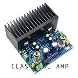 LM1875 AC18V Placa de Amplificador de Tubo de vacío HiFi Amplificador de válvula electrónica 6J1 Kit de Bricolaje Producto Terminado - Azul