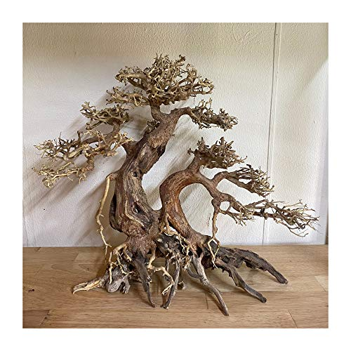 StoreLux Aquarium Driftwood Tree, Bonsai Driftwood for Aquarium, Aquarium Driftwood Freshwater, Bonsai Aquarium Tree, aquascape Driftwood ((30L x 30H) cm)