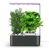 amzWOW Clizia Smart Garden Huerto de Interior, Sistema de Cultivo hidropónico para Cultivar Plantas y Semillas aromaticas - Jardinera de Interior de Hierbas con luz de Crecimiento LED (Space Grey)