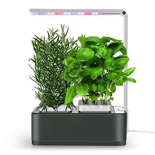 amzWOW Clizia Smart Garden - hydroponische anzuchtsysteme mit led pflanzenlampe- Automatisches Timer Keimungs Kit- Wassermangelalarm, Ziehen Sie Ihre eigenen aromatischen Kräuter zuhause (Space Grey)