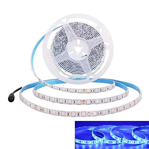 JOYLIT 24V Striscia LED Blu 5M 300LEDs SMD5050, Flessibile IP65 Impermeabile Luce Nastro Luminoso per Decorazione di armadio da cucina, Camera da letto
