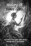 History Of Bimini Glass: The History Of Fritz Lampl's Family And The Problems Faced By Jews In Vienna: Story Of The Glassmakers