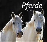 times&more Pferde Bildkalender. Wandkalender 2020. Monatskalendarium. Spiralbindung. Format 30 x 27 cm