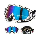Nicole Knupfer Skibrille Motorradbrillen Schutzbrille,Winter Schnee Sport Snowboardbrille,Skibrille Für Damen Und Herren Jungen Und Mädchen (WeißB)