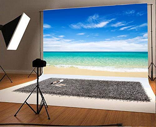 EdCott Vinyl 7x5ft Fotografie Hintergrund Schöne Strandansicht Blauer Himmel und weiße Wolken Meer Welle Thema Hochzeitshintergründe Porträts Shooting Video Studio Requisiten 2,2x1,5 m