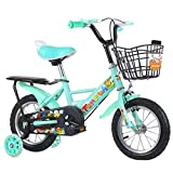 GTD-RISE Bicicleta niño Bicicleta Infantil Los niños de Bicicletas, del niño de la Bicicleta con Ruedas de Entrenamiento de Flash/Muchacha de los niños de Bicicletas Boy for 2-9 años 12'14' 16'18'