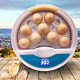 9 Uova Incubatrice per Uovo Domestico Controllabile Temperatura Mini Pollo, Anatra, Uccelli, Quaglia Hatching, Facile Da Osservare