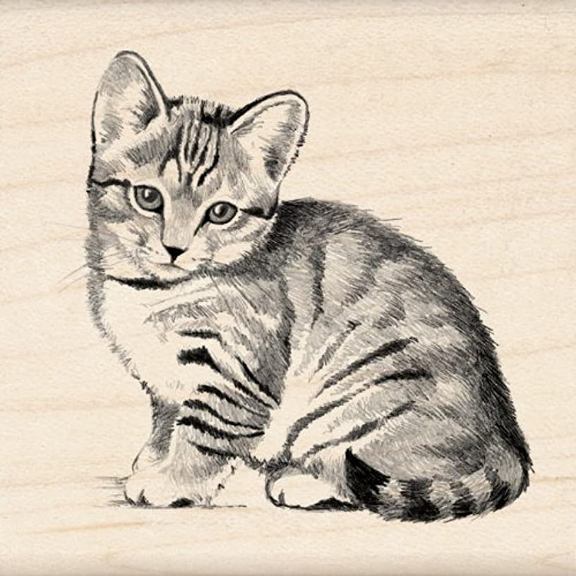 Inkadinkado Kitten Wood Stamp for Scrapbooking, 2.25'' W x 2.25'' L