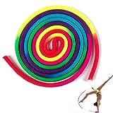 YCZCHE14 Cuerda de Gimnasia Rítmica Cuerda de Rítmicas Cuerda de Gimnasia Color del Arco Iris para Niños Adultos Entrenamiento de Artes de Competición Gimnasia Deportes 3 Metros 1 Pieza