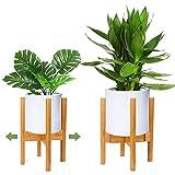 RIOGOO Soporte para plantas, soporte de plantas expandible retro Soporte para exhibición de macetas para flores Estante en maceta para interiores y exteriores jardinera de hasta 12 pulgadas(1 paquete)