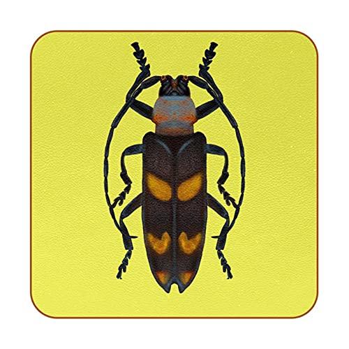 Aislamiento térmico de Posavasos cucaracha Drink Cup Mat 6PCS para Bebidas Proteger Muebles y Mesa