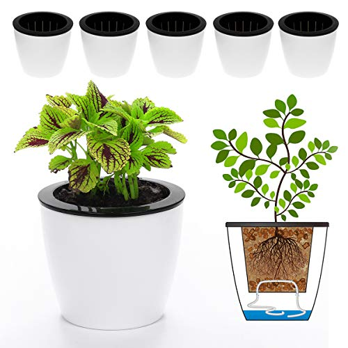 "Flower Pots, DELF 6 Pack 6.7"" Self-Watering Planters for Indoor Garden Devil's Ivy, African Violet, Ocean Spider Plant, Orchid, White"