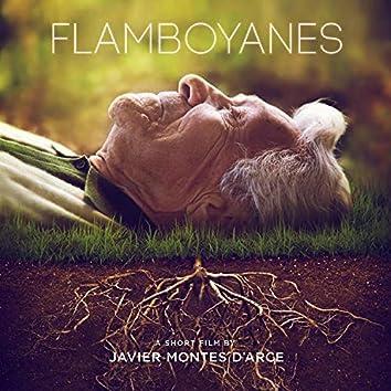 Flamboyanes (Original Short Film Soundtrack)