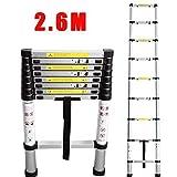 2.60 meter aluminium telescopic ladder - 9 steps - EN131 standards by Miyifan