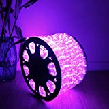 Upgraded 100ft Rope Lights ,2-Wire Low Voltage Waterproof Led Rope Lights,Indoor Outdoor Rope Lighting Kit for Background,Yard,Garden Bridges Decoration with UL Certified(Purple)