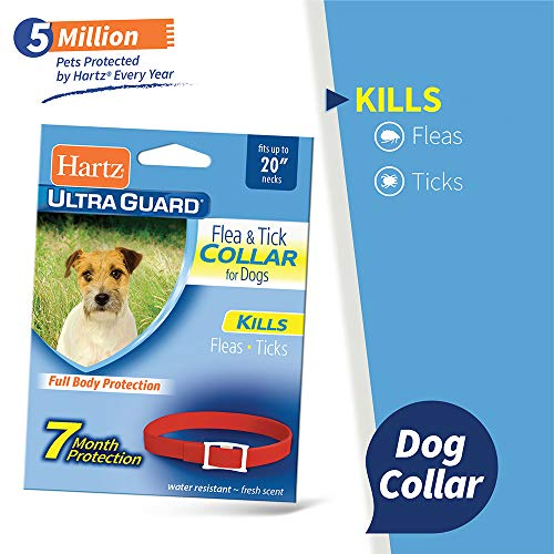 """Hartz UltraGuard Plus Reflective Orange Flea & Tick Collar for Dogs and Puppies - 22"""" Neck, 7 Month Protection"""