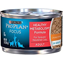 Pro plan wet cat food for weight loss