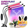LED Grow Light for Indoor Plants - Lamps IR & UV Red and Blue Spectrum for Plant Succulents, Micro Greens, Seedlings - 60W Three Head 60 LED, 5W Dimmable Levels - 3 Switch Modes and Sun Timing