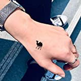 Camel Toe Size Temporary Tattoo Sticker (Set of 4) - www.ohmytat.com