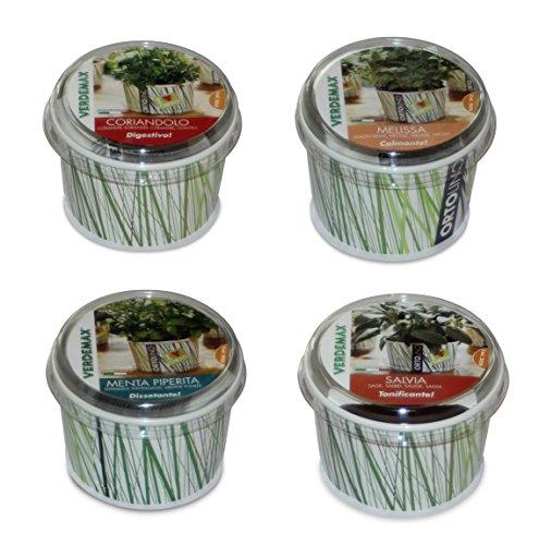 Mélange de 4 herbes aromatiques en métal