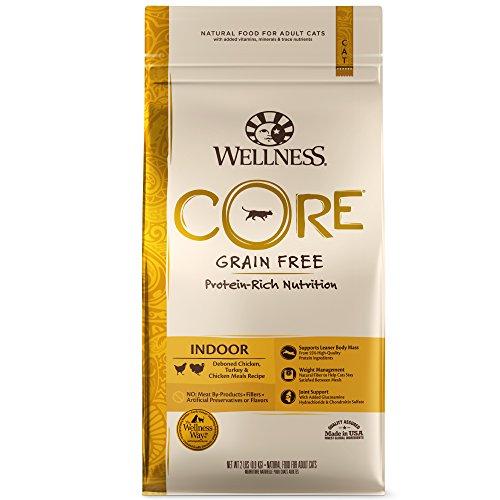 Wellness CORE Grain-Free Indoor Formula Dry Cat Food, 2 Pound Bag