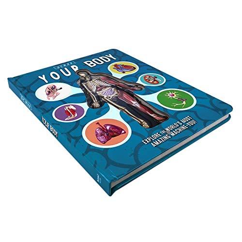 iSunday Menschlicher Körper Malbuch für Kinder, Anatomie des menschlichen Körpers in Englisch Beliebtes Wissenschaftsbuch 3D-Bilderbuch Früherziehungsbuch für Kinder