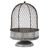 The Lakeside Collection Oversized Chicken Wire Cloche -