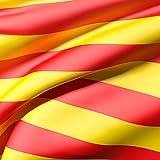 Oedim Bandera de La Comunidad de Catalunya 85x150cm | Reforzada y con Pespuntes| Bandera de La Comunidad de Catalunya con 2 Ojales Metálicos