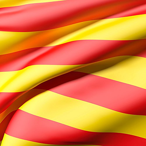 Oedim Bandera de La Comunidad de Catalunya 85x150cm   Reforzada y con Pespuntes  Bandera de La Comunidad de Catalunya con 2 Ojales Metálicos