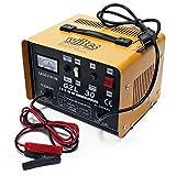 WilTec Chargeur 16A de Batterie Moto Voiture Auto Rapide - GZL30 - Batteries 12V et 24V