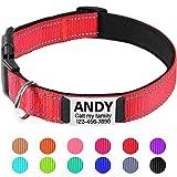TagME Collar de Perro Reflectante Personalizado,Placa de Acero Inoxidable,Grabado con Nombre y Número de Teléfono,Deslizar en Las Etiquetas de Identificación del Perro,Rojo