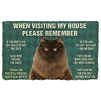 3Dペルシャ猫の家のルールを覚えておいてください玄関マットインテリアドアマット家の装飾エリアマットクリスマスハロウィーン元日ギフト