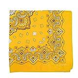 GROOMY Scarf, 54x54cm Bright Colorful Unisex Cotton Bandana Headwrap Hip Hop Dance Sport Scarf Paisley Floral Print Motorcycle Scarf Wristband-2