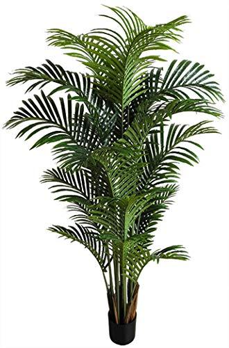 Seidenblumen Roß Hawaiipalme 150cm DA künstliche Zimmerpalme Palmen Kunstpalmen Kunstpflanzen Dekopalme