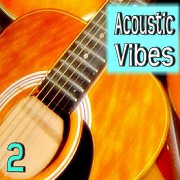 Acoustic Vibes, Vol. 2