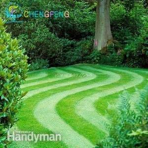 200 Graines / Paquet vert Source gazons Semences à gazon Semence extérieur Jardin Evergreen Lawn Doux Natural Plant Petit cadeau Bonsai