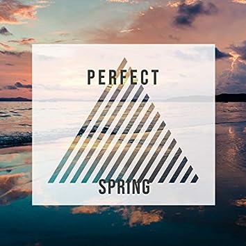 Perfect Spring, Vol. 4
